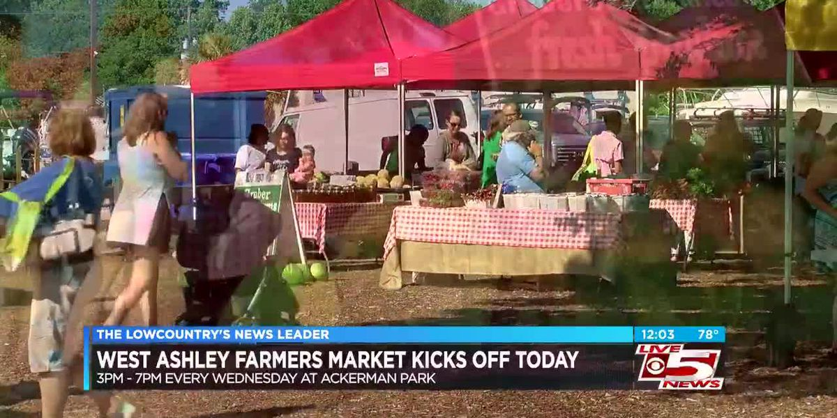 VIDEO: West Ashley farmers market opens Wednesday afternoon with new vendors, several Lowcountry farmers