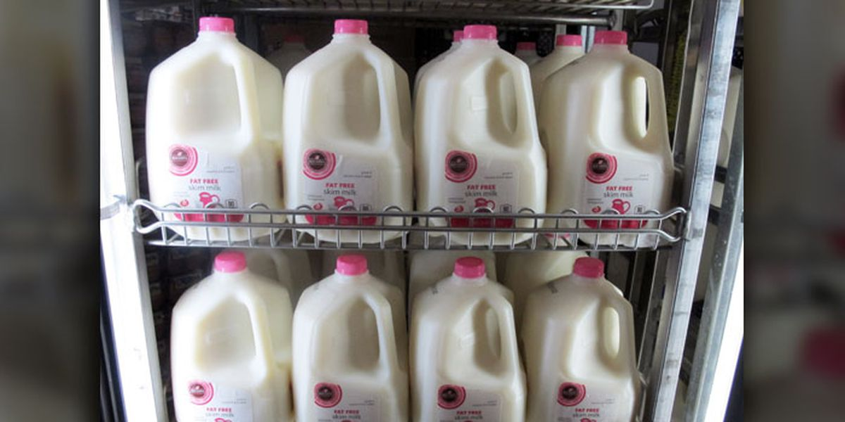 Cow's milk is a symbol of white supremacy, PETA claims