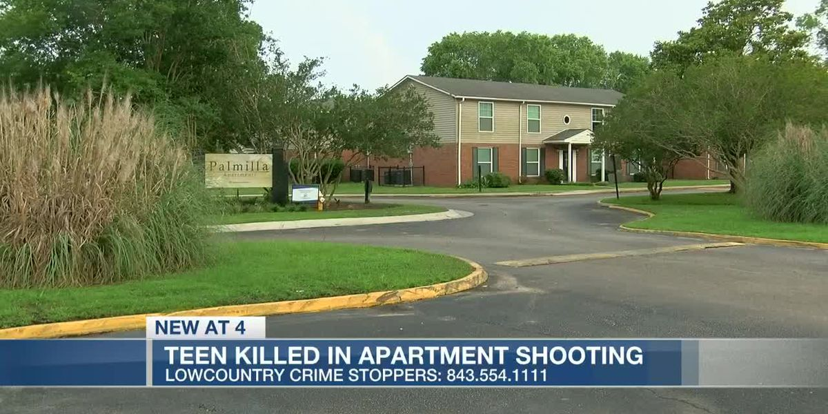 VIDEO: Police: 15-year-old found shot and killed at West Ashley apartment complex