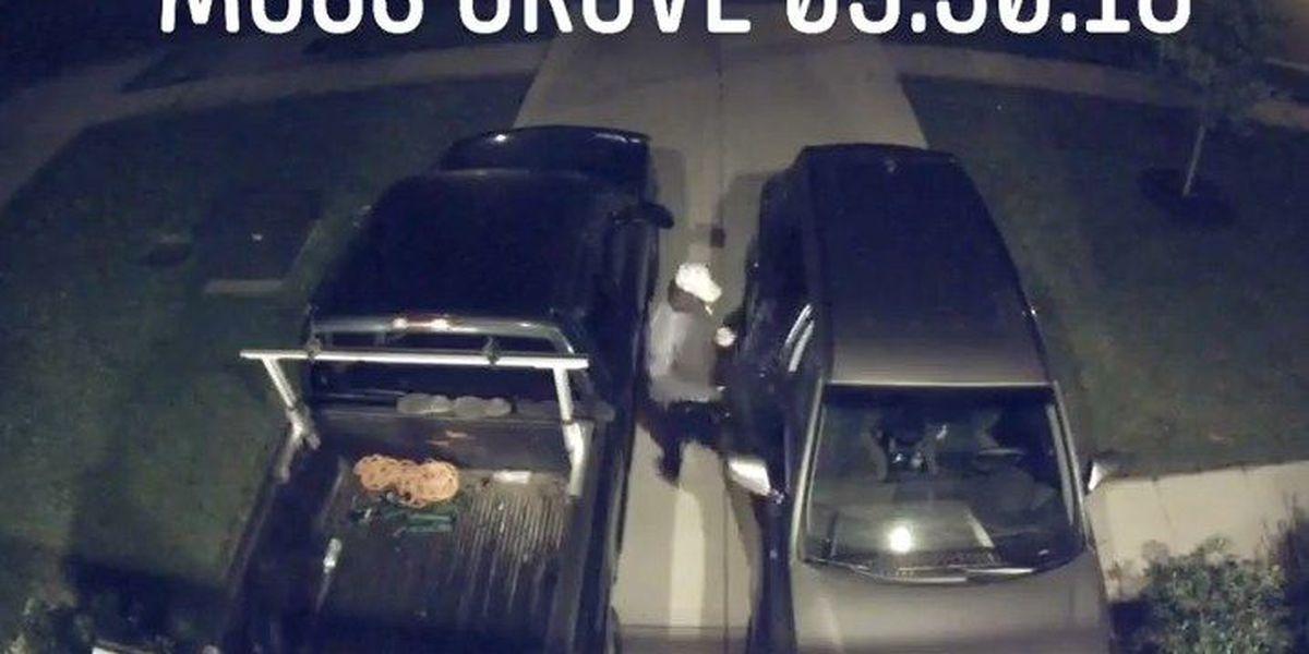 VIDEO: Thief breaks into several vehicles in Berkeley County neighborhood