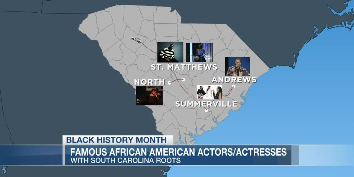 VIDEO: These famous faces in Hollywood have roots in the Lowcountry and South Carolina