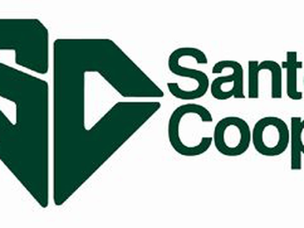 Santee Cooper OKs plan to improve; will stay secret for now