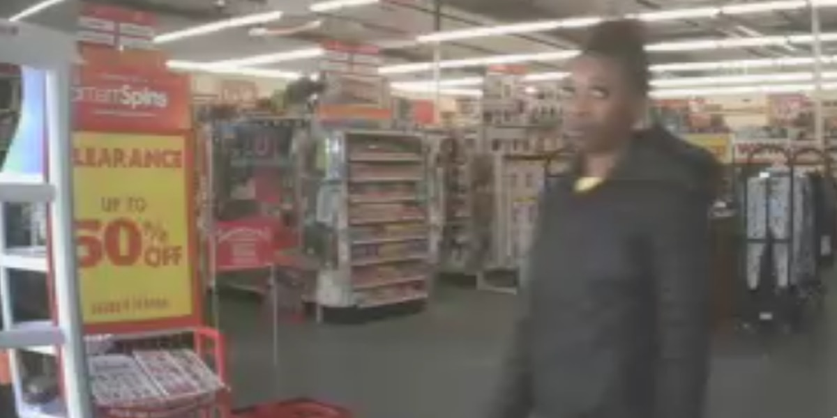Police looking for a woman after carjacking incident at a Lowcountry discount store