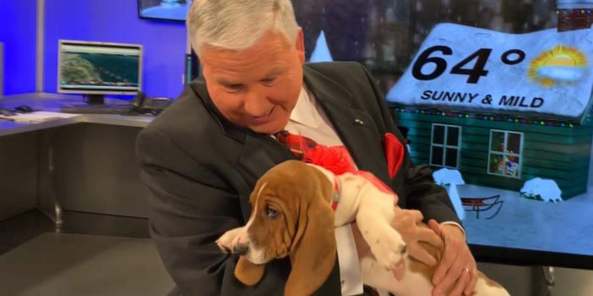 Live 5 Chief Meteorologist Bill Walsh gets early Christmas surprise on set