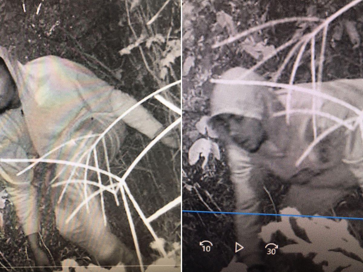 Pictures capture men sought for stealing $400 worth of batteries from Lowcountry business
