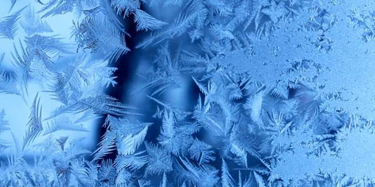 Freezing temperatures headed for Lowcountry