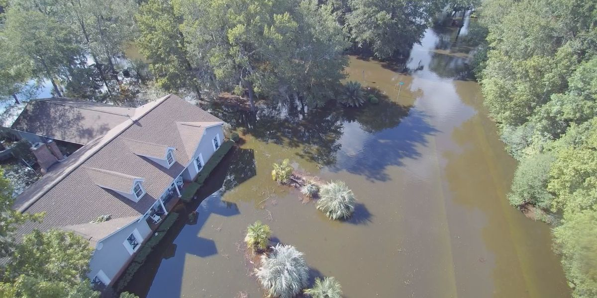 Charleston City Council to apply for grants to help with major drainage projects