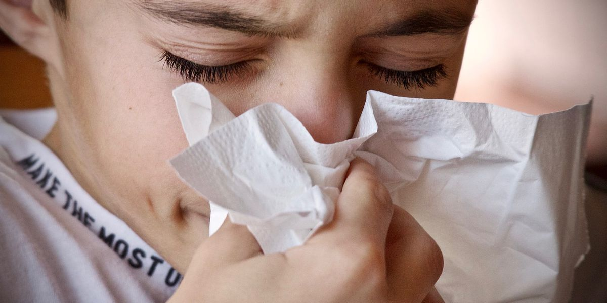 Parent Survival Guide: Helping your family cope with fall allergies