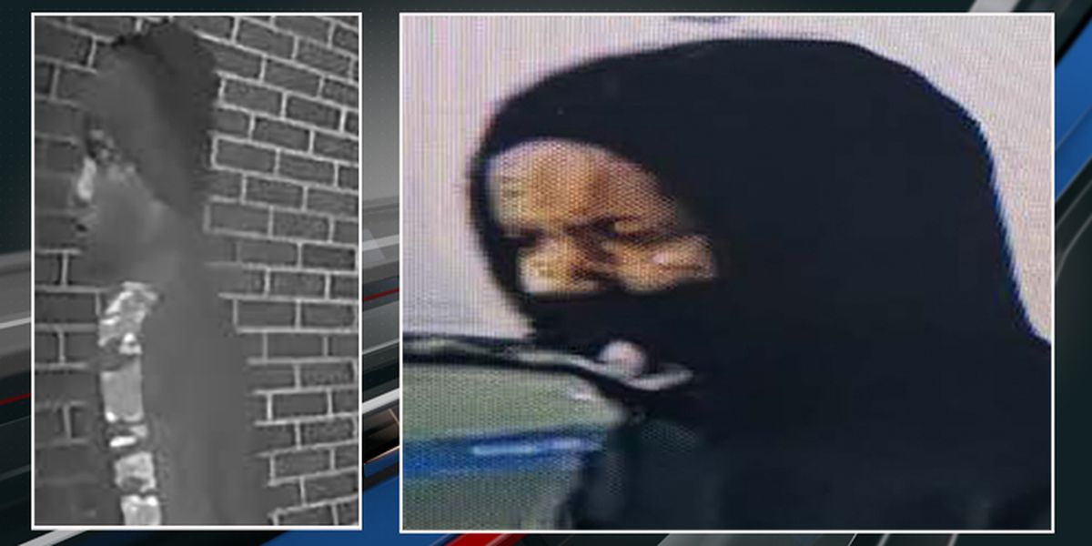 Police seeking to identify person in connection to thefts, vandalism at W. Ashley neighborhoods