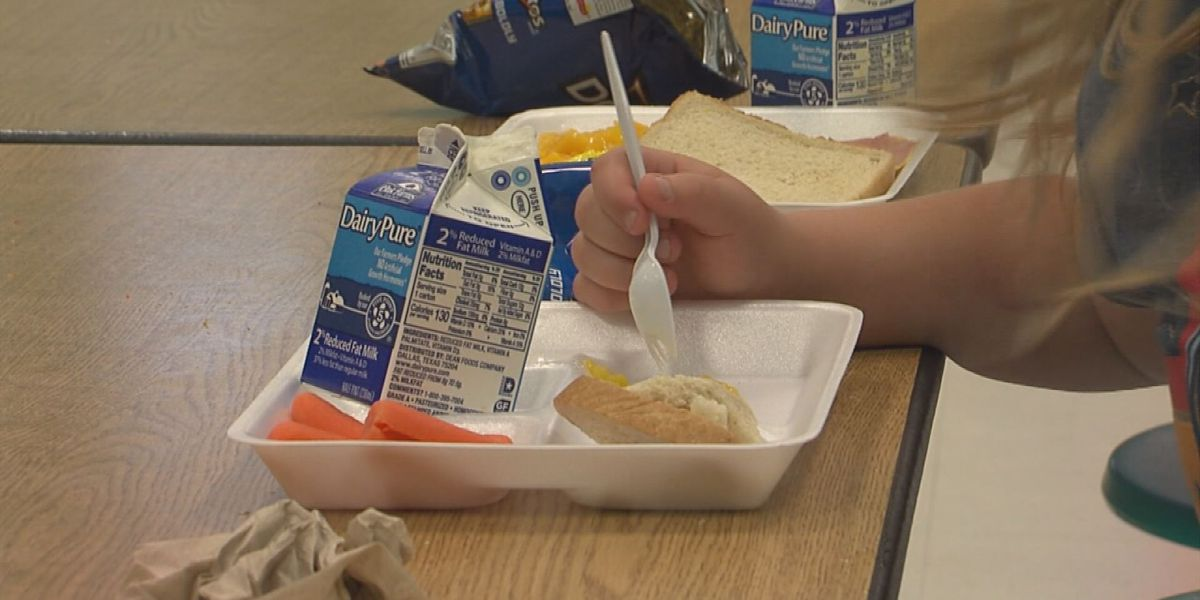 TN bill would require schools to feed students who cannot afford lunch