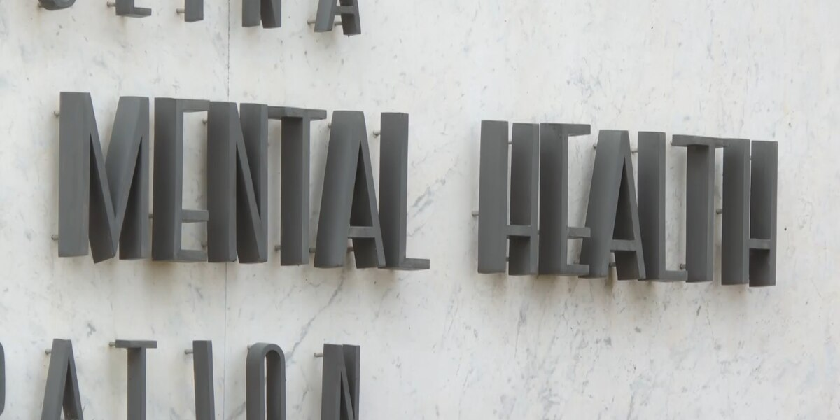 Mental health counselors urge governor to expand SC Medicaid coverage