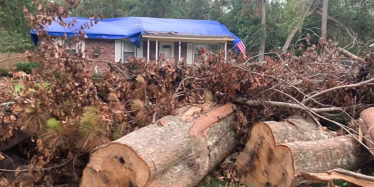 Johns Island neighborhood asking for help in clearing May tornado damage