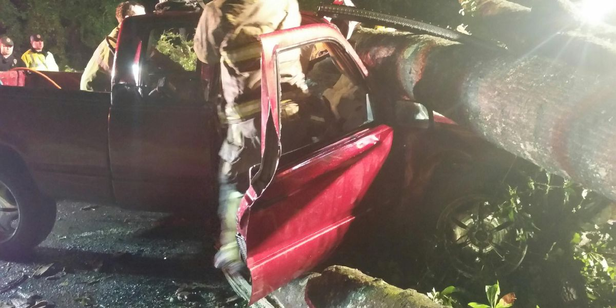 Crews rescue trapped man after truck crashes into downed tree in Walterboro