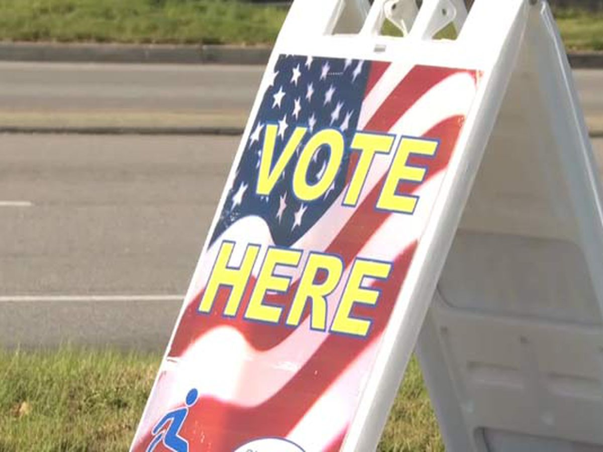 Ravenel hosting special town council election