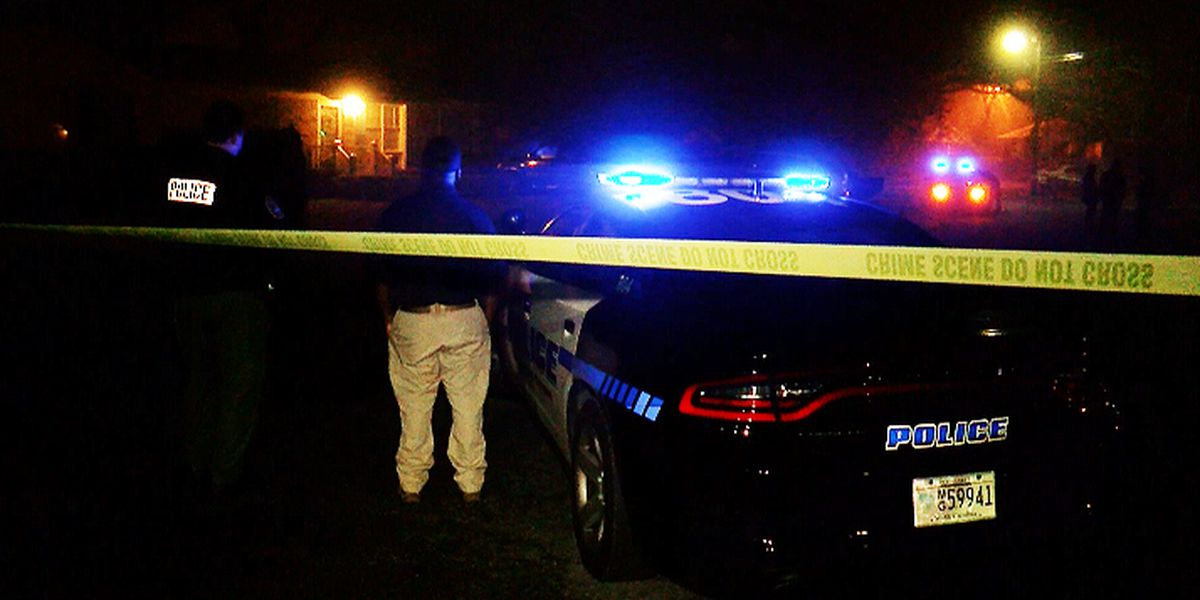Police arrest two suspects for murder after woman's body found in James Island home