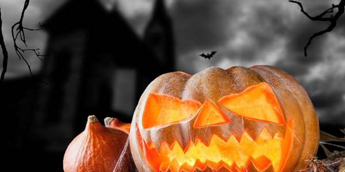 Lowcountry celebrates Halloween with trick-or-treating events