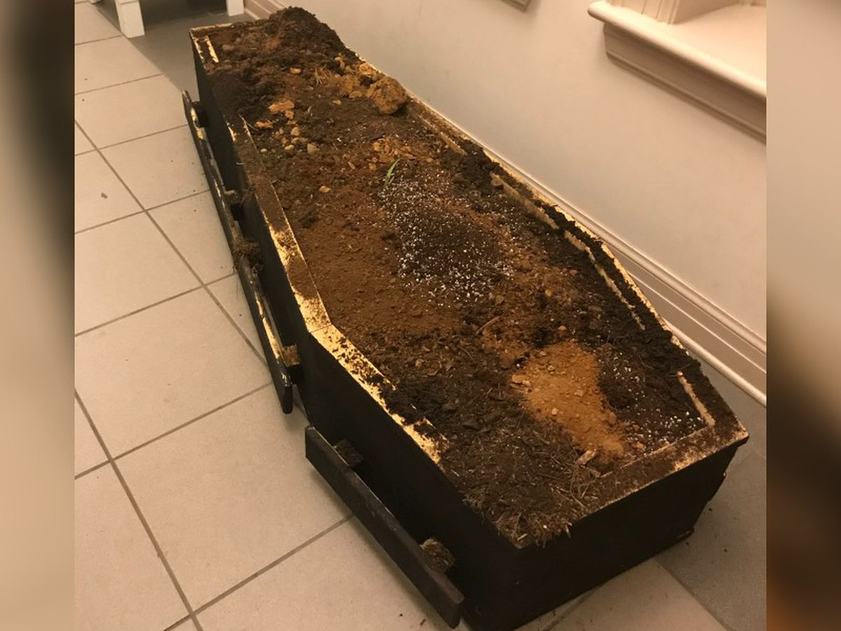 Police: Protesters put casket of cow manure in front of Asheville police department