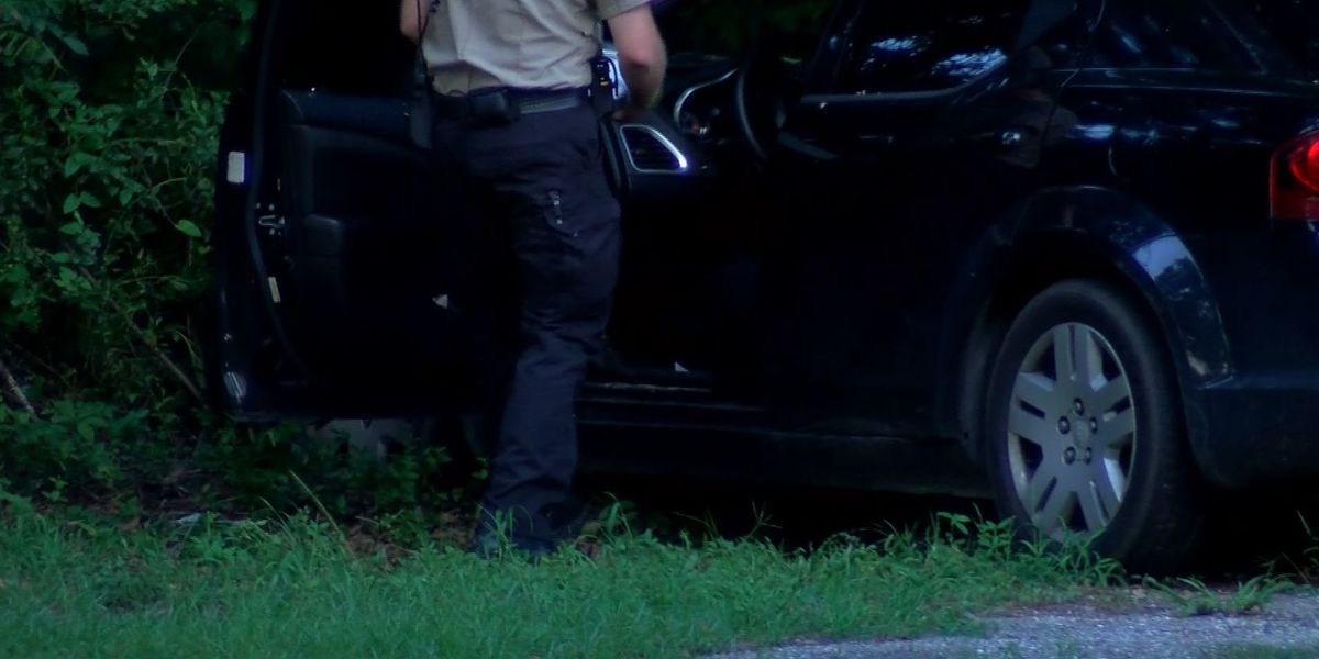 Police: Three charged after officers chase stolen car through N. Charleston