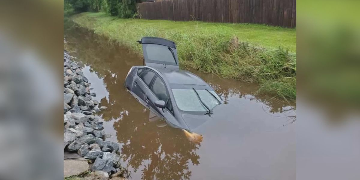 Lifeguard saves flood victims after car swept into ditch