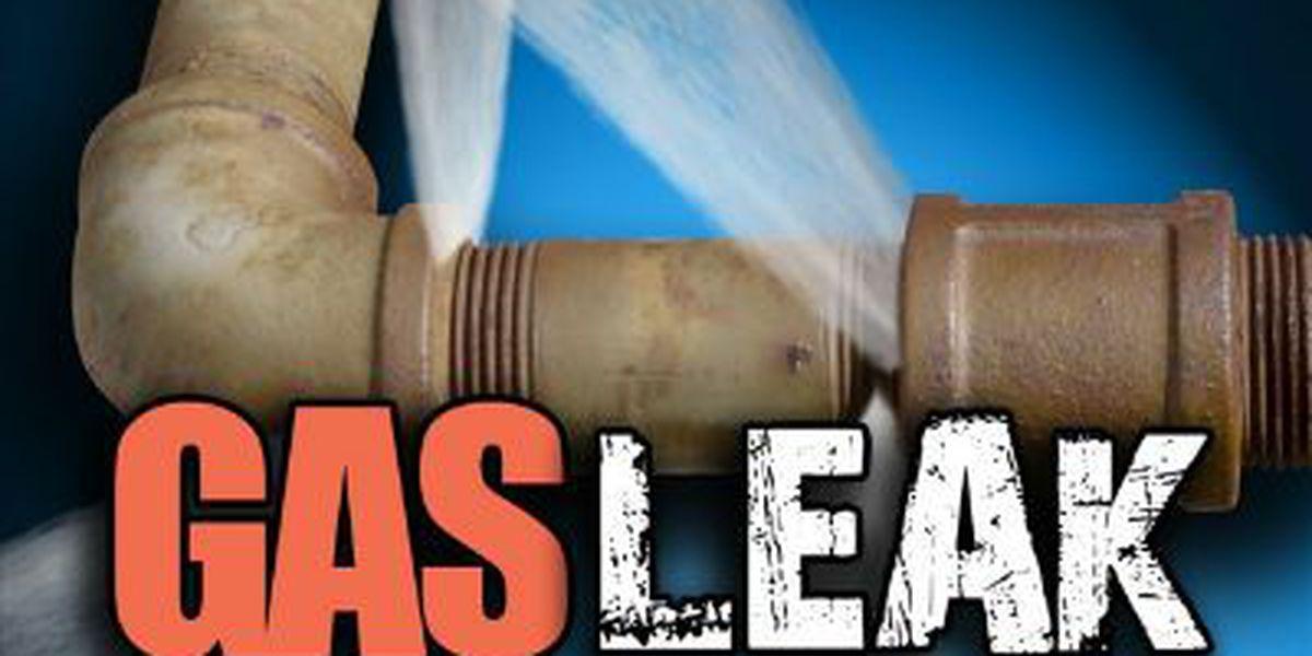 Gas leak capped on Sheppard Street