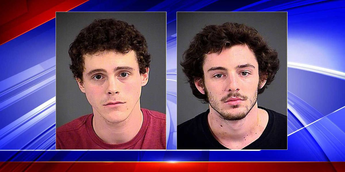 2nd suspect in Shadowmoss burglary surrenders, police say