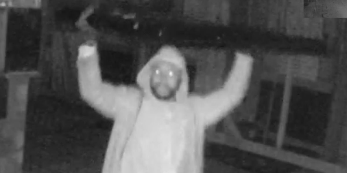 Police searching for suspect who stole $800 TV from James Island restaurant