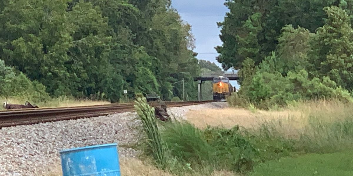 No leak found from train that prompted Moncks Corner hazmat scare