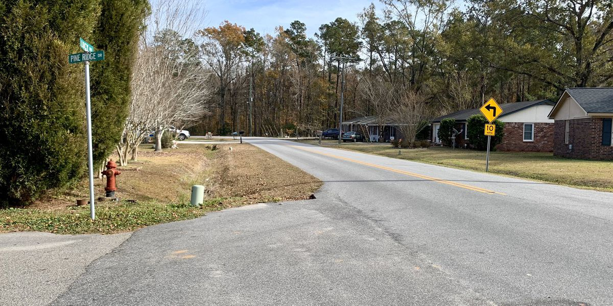 Goose Creek City Council denies zoning change for townhome proposal