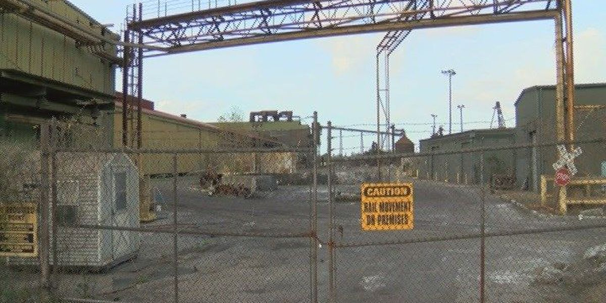 Redevelopment plans for steel mill site have Georgetown residents divided