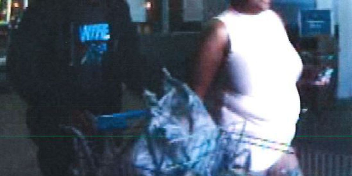 Police searching for pair who used stolen credit cards at store