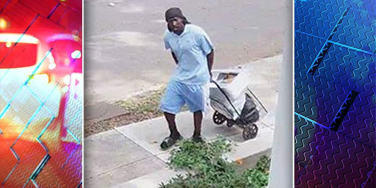 Police search for man caught on camera taking boxes from porch