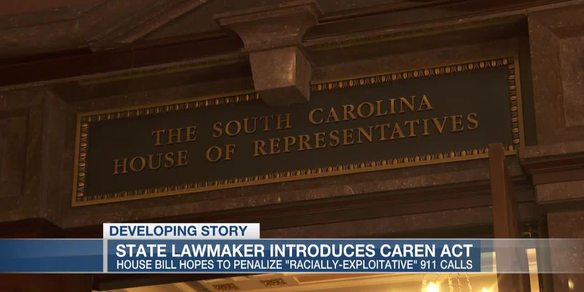 VIDEO: SC lawmaker introduces 'CAREN' act to penalize non-emergency 911 calls