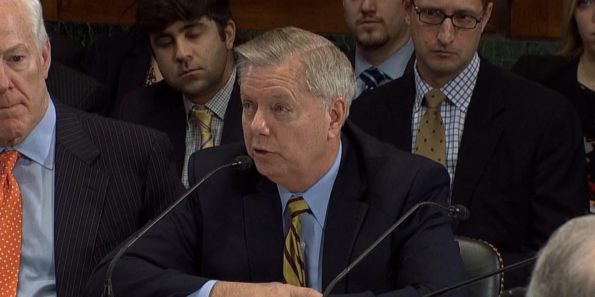 Sen. Graham vows to follow-up on affidavit from Penn. postal worker alleging election fraud
