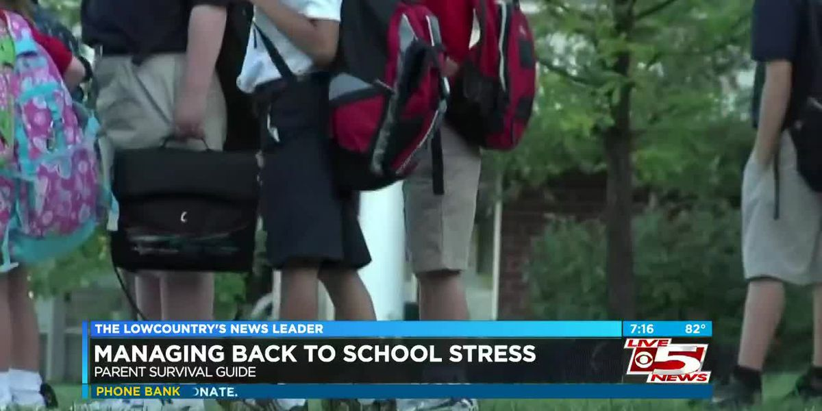 VIDEO: Parent Survival Guide: Relieving back to school stress and anxiety