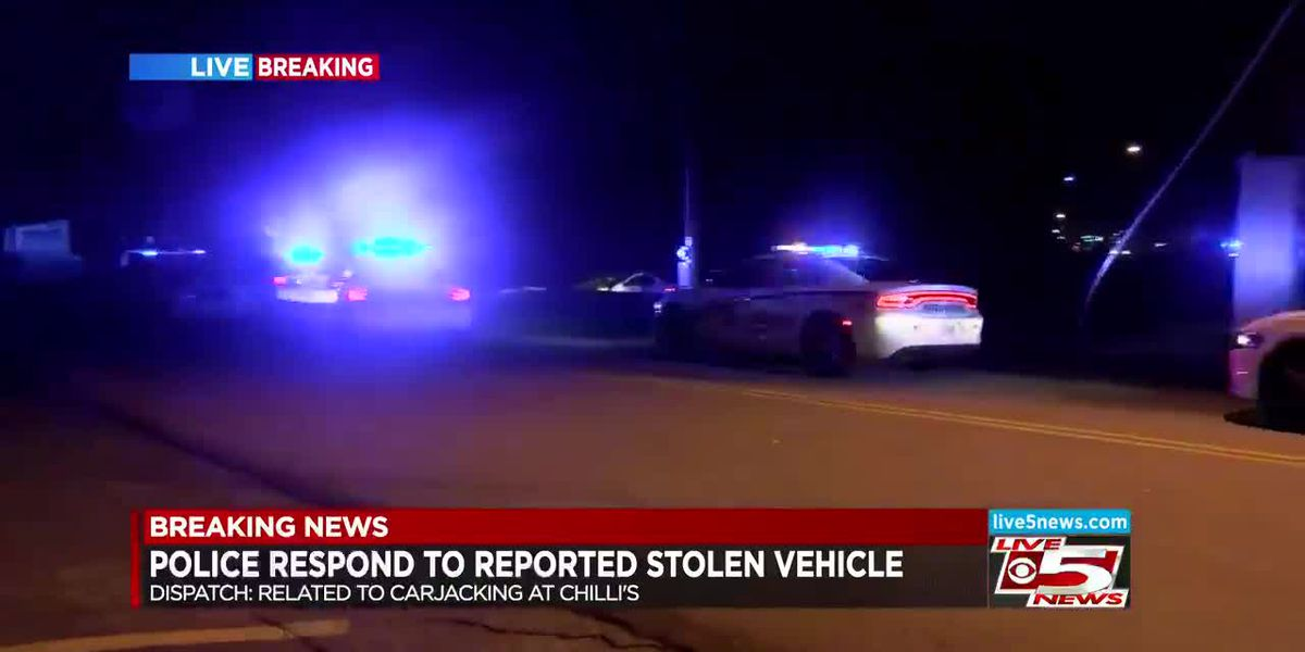 VIDEO: Police respond to reported stolen vehicle