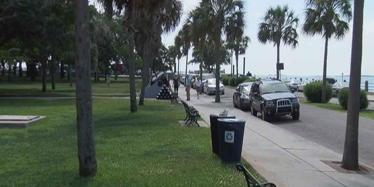 Leaders invite opinions for changes that should come to downtown Charleston