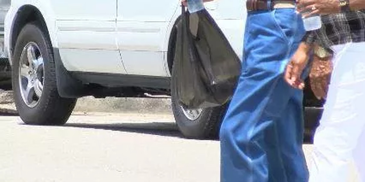 Plastic bags to be banned in Beaufort County