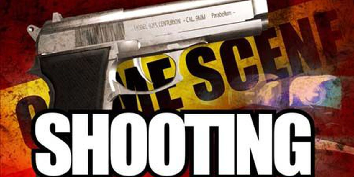 Police search for suspect in Goose Creek apartment complex shooting