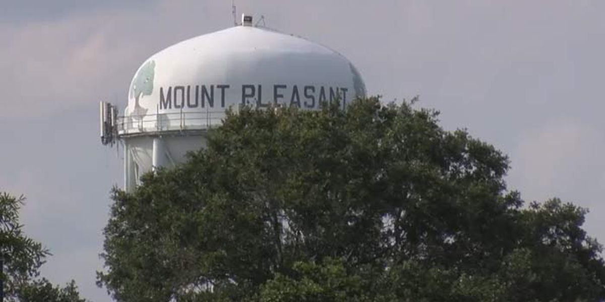 Mount Pleasant leaders working to showcase Lowcountry artists