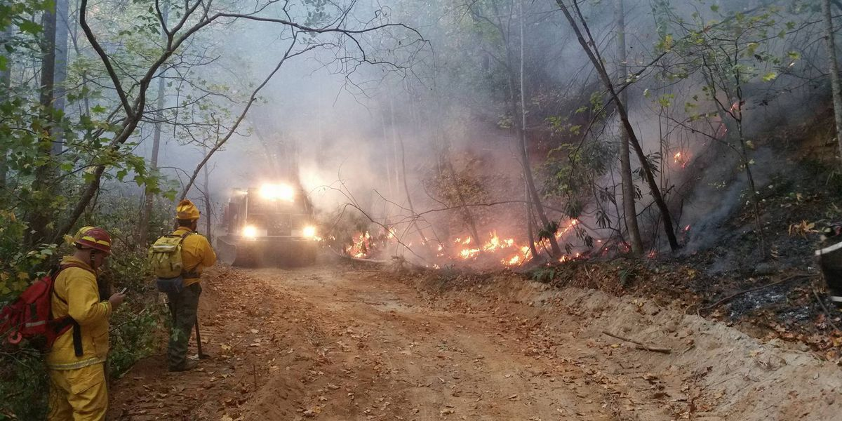 SC Forestry Commission lifts burning ban for Pee Dee and Coastal counties, still in effect for Piedmont counties
