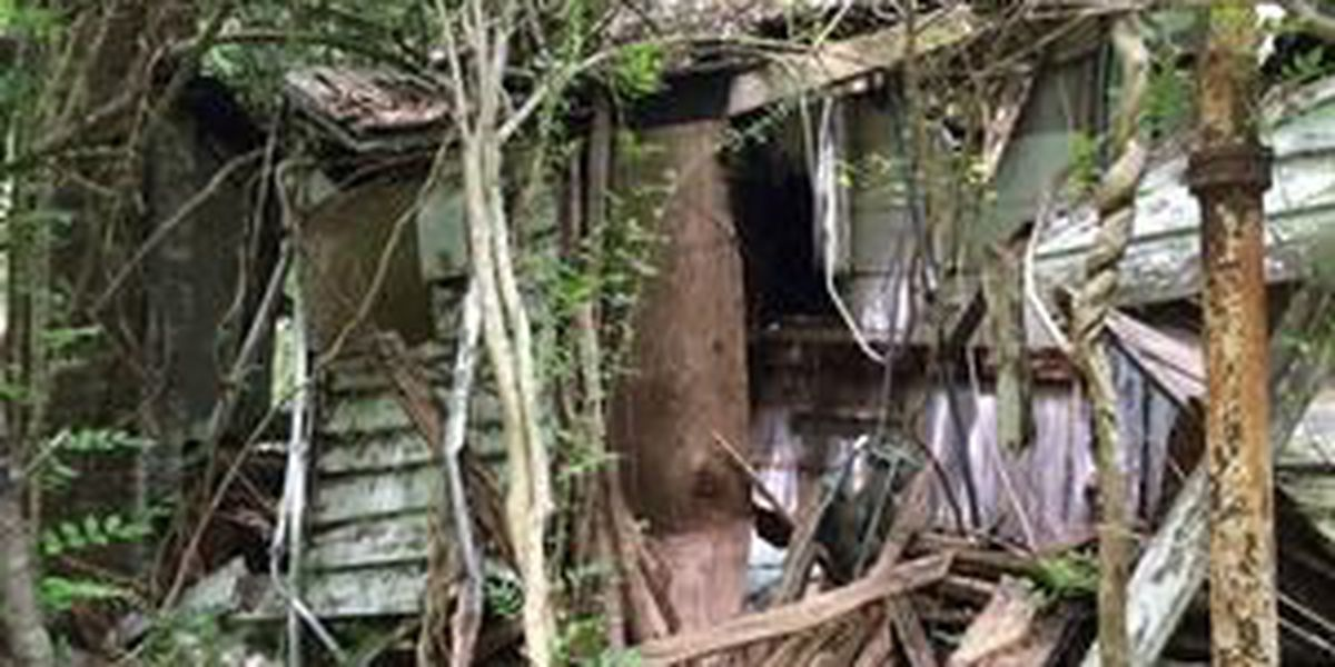 Park Service set to demolish 80-year-old historic cottage in Mt. Pleasant