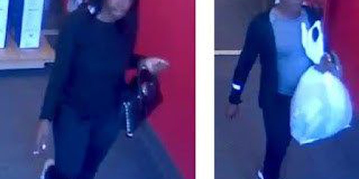Officers searching for women accused of using credit cards stolen from senior facility residents