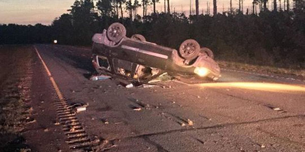 Dog killed in McClellanville car accident