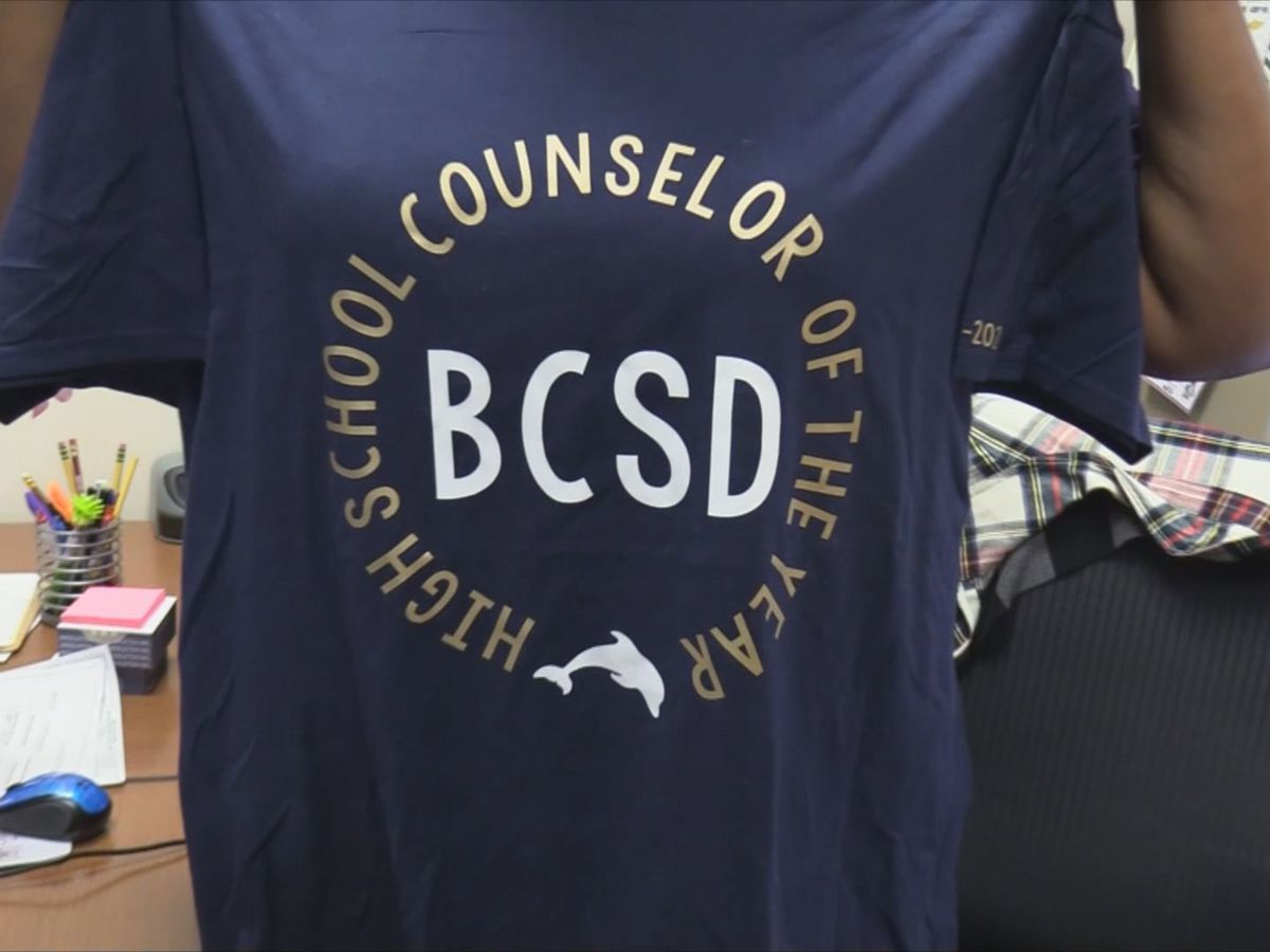 Beaufort Co. School District honors Counselor of the Year