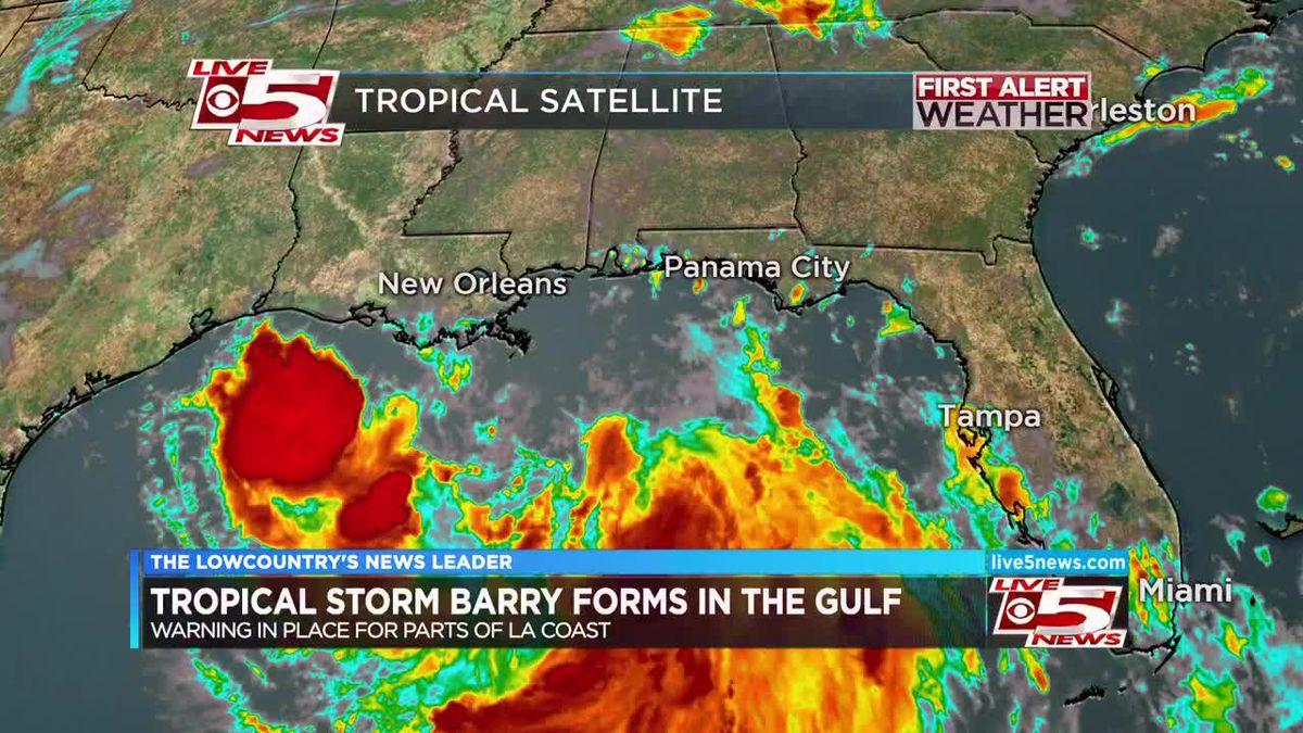 VIDEO: Tropical Storm Barry forms in Gulf of Mexico