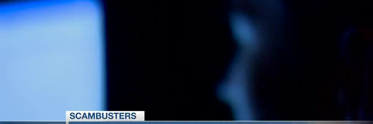VIDEO: Live 5 Scambusters: Online network provides scam resources for seniors