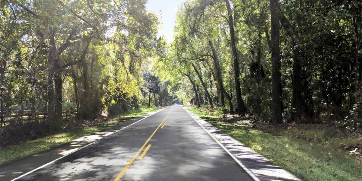 Construction and tree preservation to begin on scenic Hwy. 61