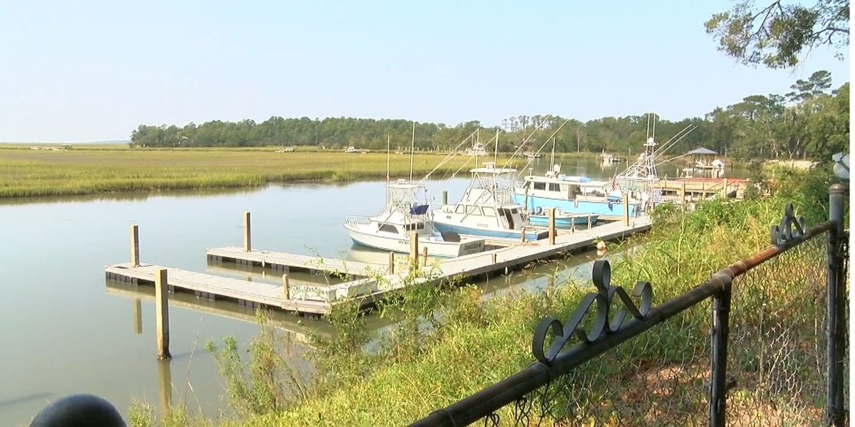 Charleston Co. council chairman hopes to protect Wadmalaw Island from overdevelopment