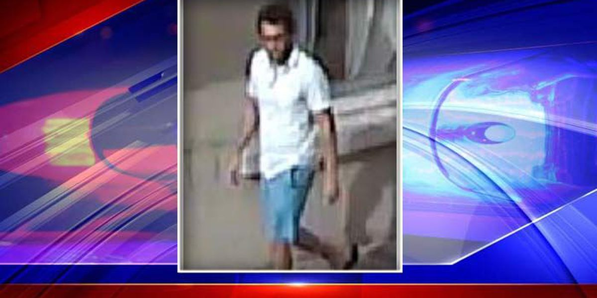 Charleston police looking for man who assaulted woman, made lewd comments