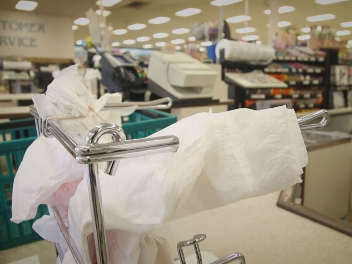 Charleston Co. passes plastic bag ban